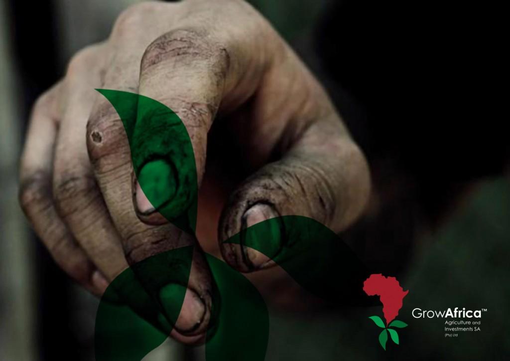Grow-Africa-7