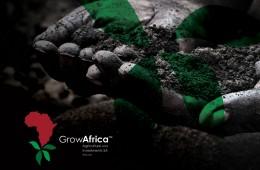 Grow Africa Coporate Identity Design