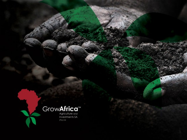 Grow Africa corporate identity design